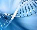 Személyes felelősségünk a genetikánál is fontosabb